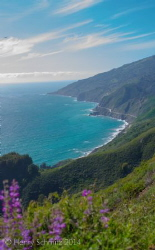 Big Sur coast, California. by Henry Schmitz